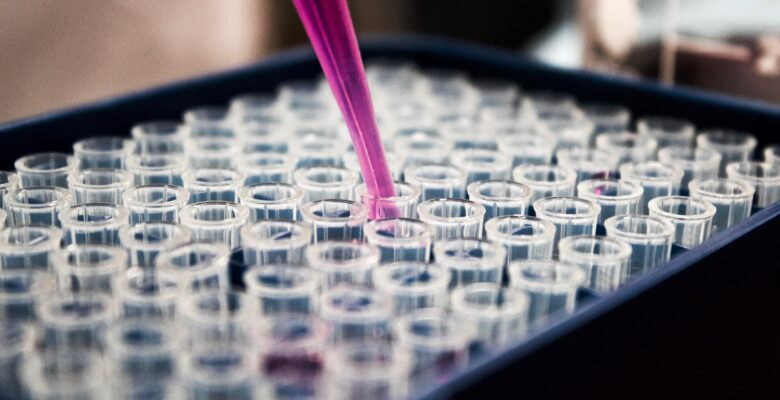 Life sciences investment reveals North-South divide